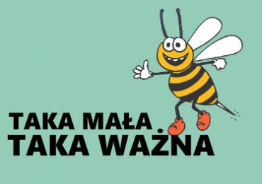 Pszczoła – taka mała, a taka ważna!