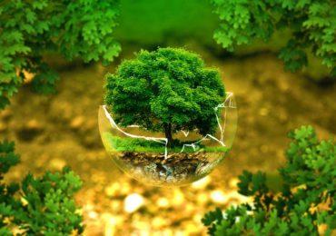 Okres sprawozdawczy w ochronie środowiska.